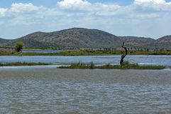Lake (pond) in Pilanesberg National Park Stock Image