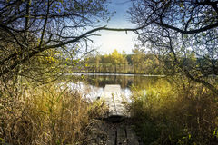 Lake - Pond Wide Angle View with Trees. And Branches, Wooden Pier royalty free stock images