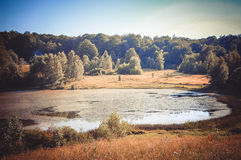 Lake, pond in the woods Stock Photography