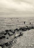 Lake Pontchartrain Shoreline Landscape Royalty Free Stock Images