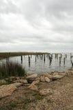 Lake Pontchartrain Shoreline Landscape Stock Photos