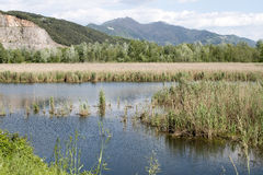 Lake of porta in tuscany Royalty Free Stock Image