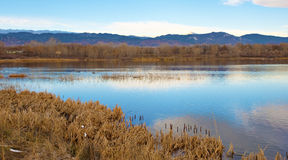 Lake on the Prairie with Blue Sky Reflection Royalty Free Stock Photo