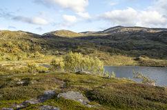 Lake in the prairies south of Norway Royalty Free Stock Image