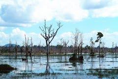 Lake in Preah Neak Pean, Siem Reap, Cambodia Stock Images
