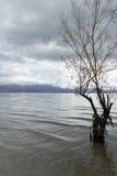 Lake Prespa Stock Photos