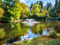 Lake in the public Beacon Hill Park, Victoria BC Canada Royalty Free Stock Photography