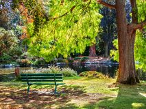 Lake in the public Beacon Hill Park, Victoria BC Canada Royalty Free Stock Photo