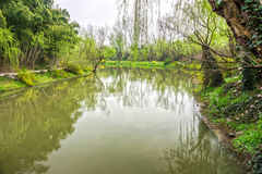 Lake in public park Stock Images
