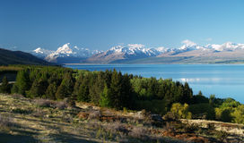 Lake Pukaki and Mount Cook Royalty Free Stock Image