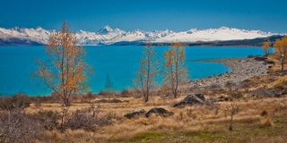 Lake Pukaki with Mt. Cook in background, New Zealand. Lake Pukaki with Mt. Cook in background, South Island, New Zealand stock photography