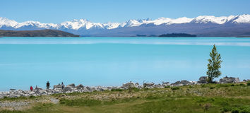 Lake Pukaki, New Zealand Royalty Free Stock Photography
