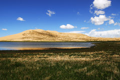 lake qinghai Royaltyfria Bilder