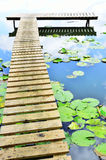 Lake, quay and water lilies Royalty Free Stock Photos
