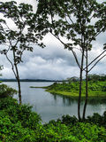 Lake in the rainforest Royalty Free Stock Photo