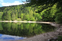 Lake of Ravens in the Vosges Stock Photos