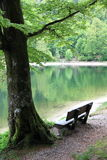 Lake of Ravens in the Vosges Royalty Free Stock Photos