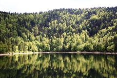 Lake of Ravens in the Vosges Stock Images