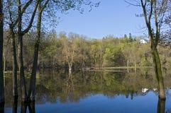 Lake Rebecca Park Inlet Royalty Free Stock Image