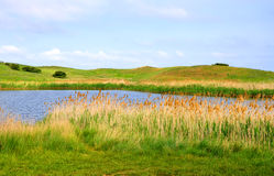 Lake, reeds and hills Stock Photography