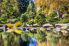 Lake Reflecting Nice Garden. Evergreen trees reflected in calm blue water stock photography