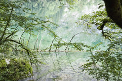 Lake Reflection. In Berchtesgaden in Germany Royalty Free Stock Photography