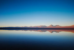 Lake reflection in the Atacama desert Royalty Free Stock Photography