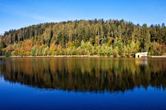 Lake with reflection of autumn Royalty Free Stock Image