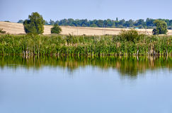 Lake with reflection Royalty Free Stock Photos