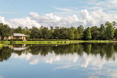 Lake reflection clouds Florida. A small lake in the middle of Florida during the summer with reflection of trees and clouds royalty free stock image