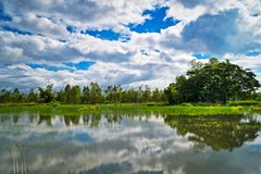 Lake With Reflection Clouds royalty free stock photos