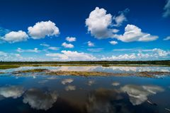 Lake With Reflection Clouds stock images