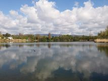 Lake reflection. Clouds river bird landscape Royalty Free Stock Images