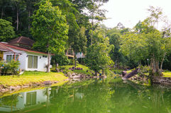 Lake Reflection - Green Forest Royalty Free Stock Photo