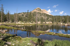 Lake Reflection in the High Uinta Mountains. Beautiful scenic lake reflection taken in the High Uintas in Utah Stock Images