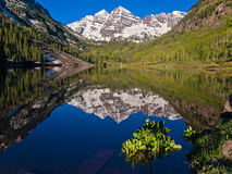 Lake reflection of the Maroon Bells near Aspen, Colorado. The Maroon Bells reflected in Maroon Lake in spring. Aspen, Colorado Royalty Free Stock Image