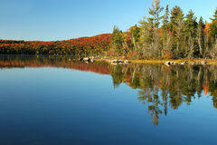 Lake reflection scene in the fall Stock Images