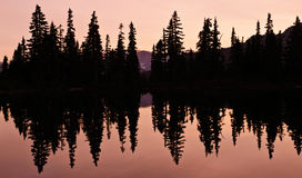 Lake reflection with silhouette of trees Royalty Free Stock Photos