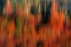 Lake Reflections of Autumn Royalty Free Stock Photo