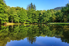 Lake reflections in a city park horizontal. Reflections trees on the shore of the lake in a city park horizontal Royalty Free Stock Image