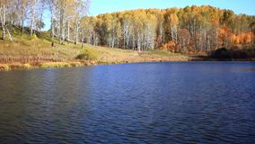 Lake reflections of fall foliage. Colorful autumn stock footage