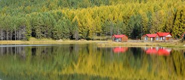 Lake reflections in fall. Forest and red houses reflections on lake in fall stock images