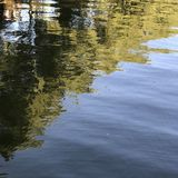 Lake reflections river reflections. Lake reflections and green trees Royalty Free Stock Photo