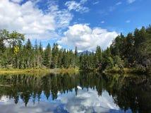 Lake Reflections royalty free stock image