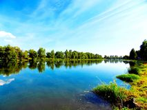 Lake with reflexion. Trees and sky Royalty Free Stock Photo