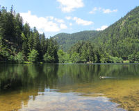 Lake Retournemer, Alsace, France. Lac de Retournemer: an idyllic lake situated in Xonrupt, in the beautiful Vosges mountains of France. The area is a popular Royalty Free Stock Photo