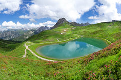 Lake Riezler Alpsee with alpine roses Royalty Free Stock Images