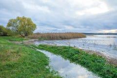 Lake in Riga, district Jugla. Autumn, yellow tree leaves, lake, Royalty Free Stock Image