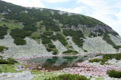 Lake in Rila mountain Stock Images