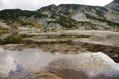 Lake in rila mountains, bulgaria. High altitude mountain lake in rila, bulgaria Royalty Free Stock Photos